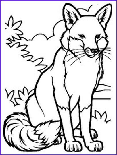Cute Baby Fox Coloring Pages part 3