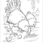 Barnyard Coloring Beautiful Images Free Printable Farm Animal Coloring Pages For Kids