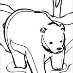 Bear Coloring Pages Beautiful Images Free Printable Bear Coloring Pages For Kids