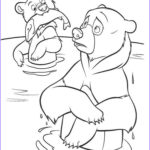 Bear Coloring Pages Luxury Photography Bear Coloring Pages Download And Print Bear Coloring Pages