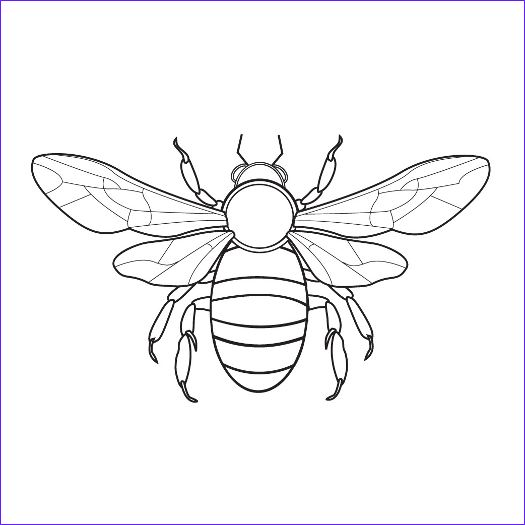 Bee Coloring Pages Best Of Photos Bee Coloring Pages