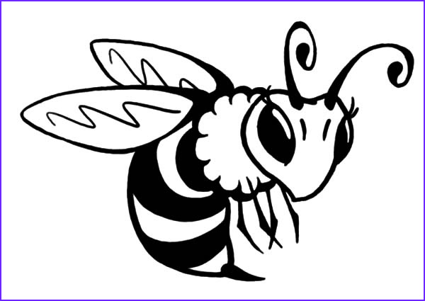 Bee Coloring Sheet Awesome Photos the Best Place for Coloring Page at Coloringsky Part 13