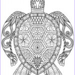 Best Adult Coloring Books Beautiful Gallery Adult Coloring Pages Animals Best Coloring Pages For Kids