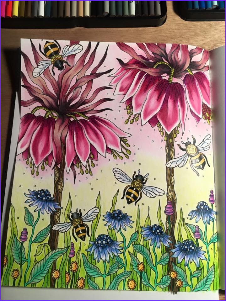 Best Pencils for Adult Coloring Books Luxury Gallery 106 Best Pleted Coloring Pages I Admire Images On