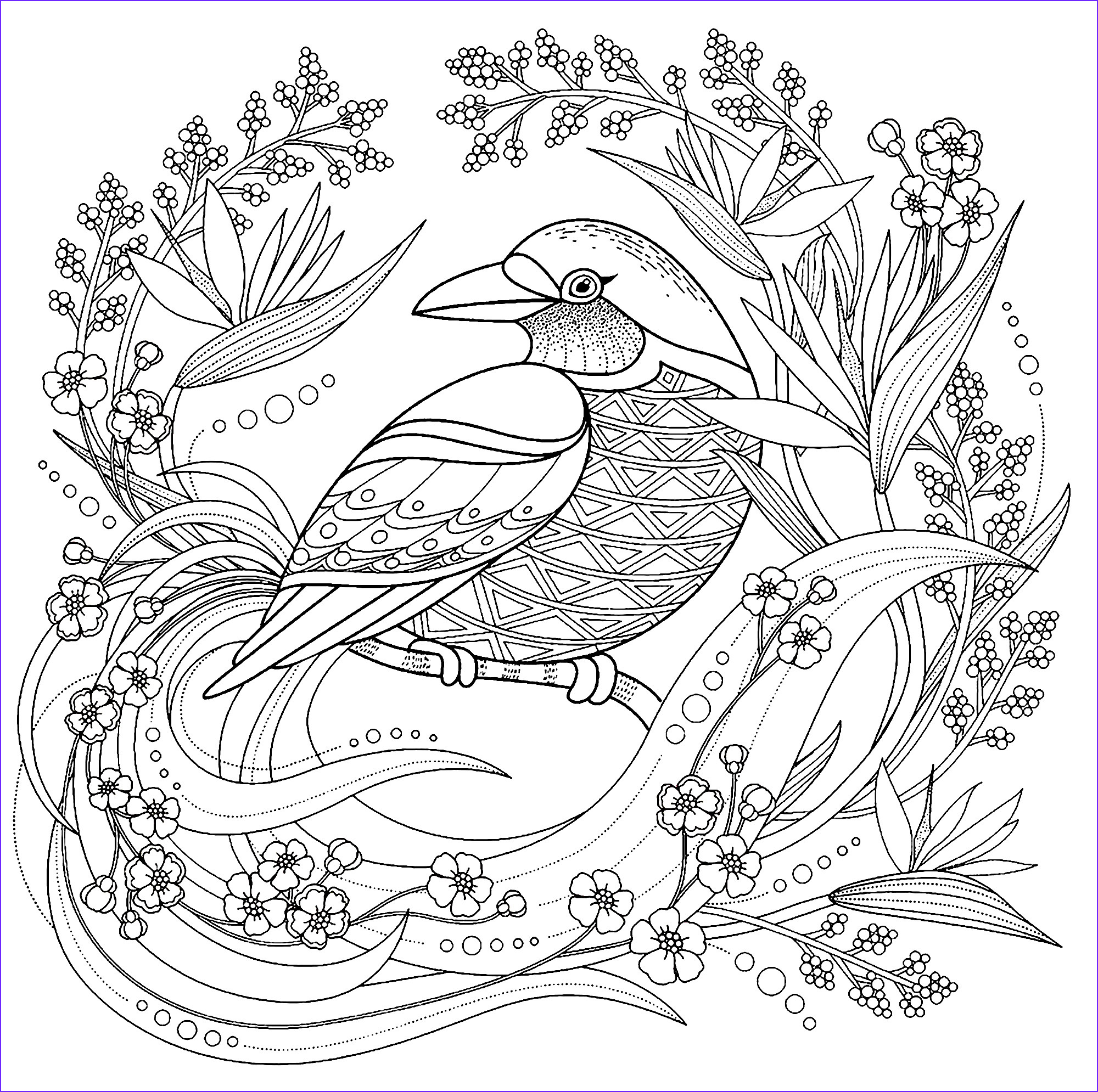 image=birds Coloring pages for children JustColor kids birds 1
