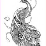 Black And White Coloring Pages For Adults Awesome Photos Free Download Coloring Peacock Coloring Pages For Adults