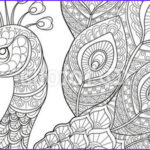 Black And White Coloring Pages For Adults Beautiful Images Vektor Peacock Adult Antistress Coloring Page Black And