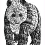 Black And White Coloring Pages For Adults Cool Stock Panda Zentangle Coloring Pages Colouring Adult Detailed