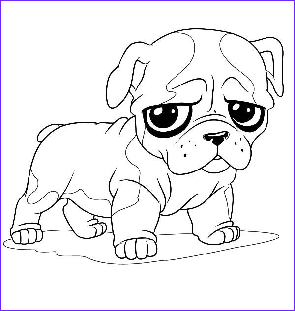 Bull Dog Coloring Pages Beautiful Gallery Cute French Bulldog Drawing