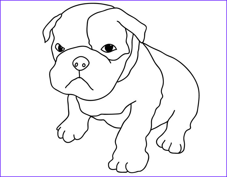 Bull Dog Coloring Pages Elegant Image American Bulldog Coloring Pages
