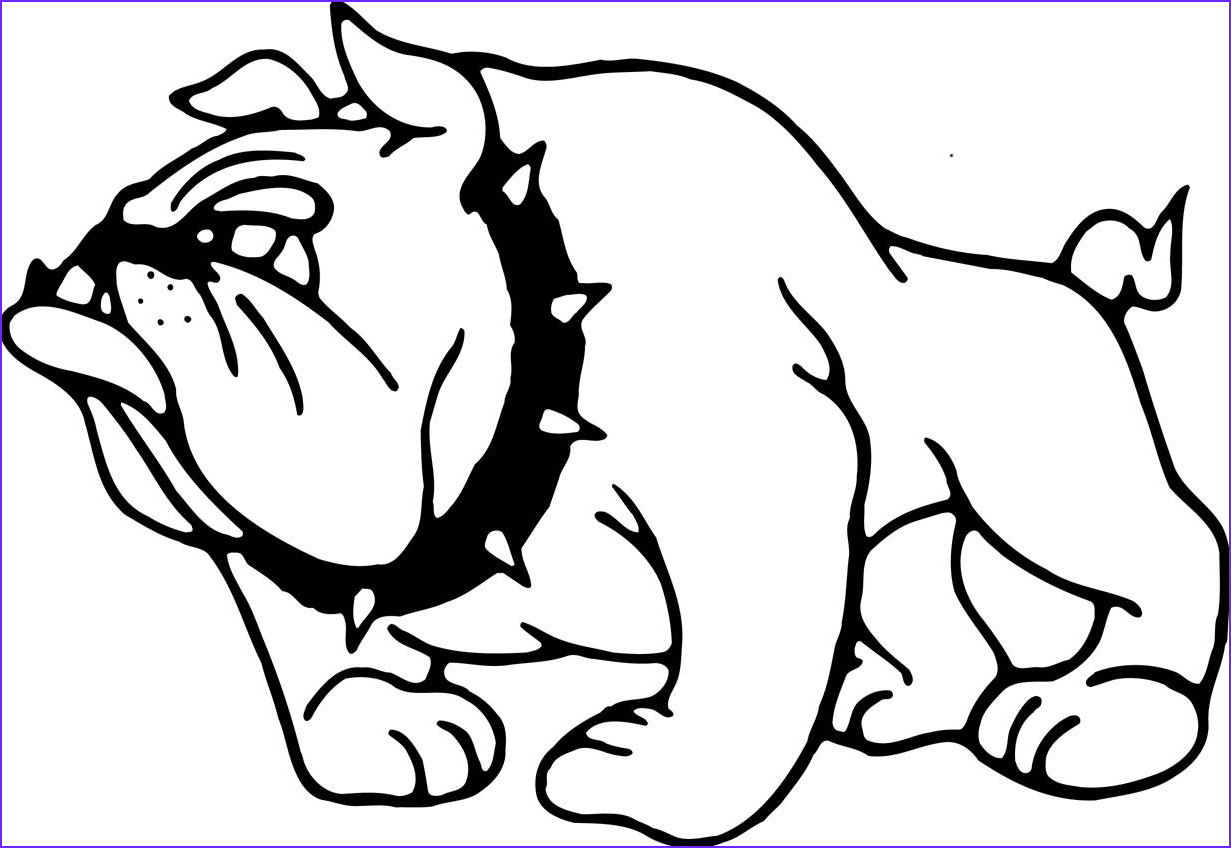 Bull Dog Coloring Pages Elegant Photography Mshsaa Ridgewood Middle School School Information