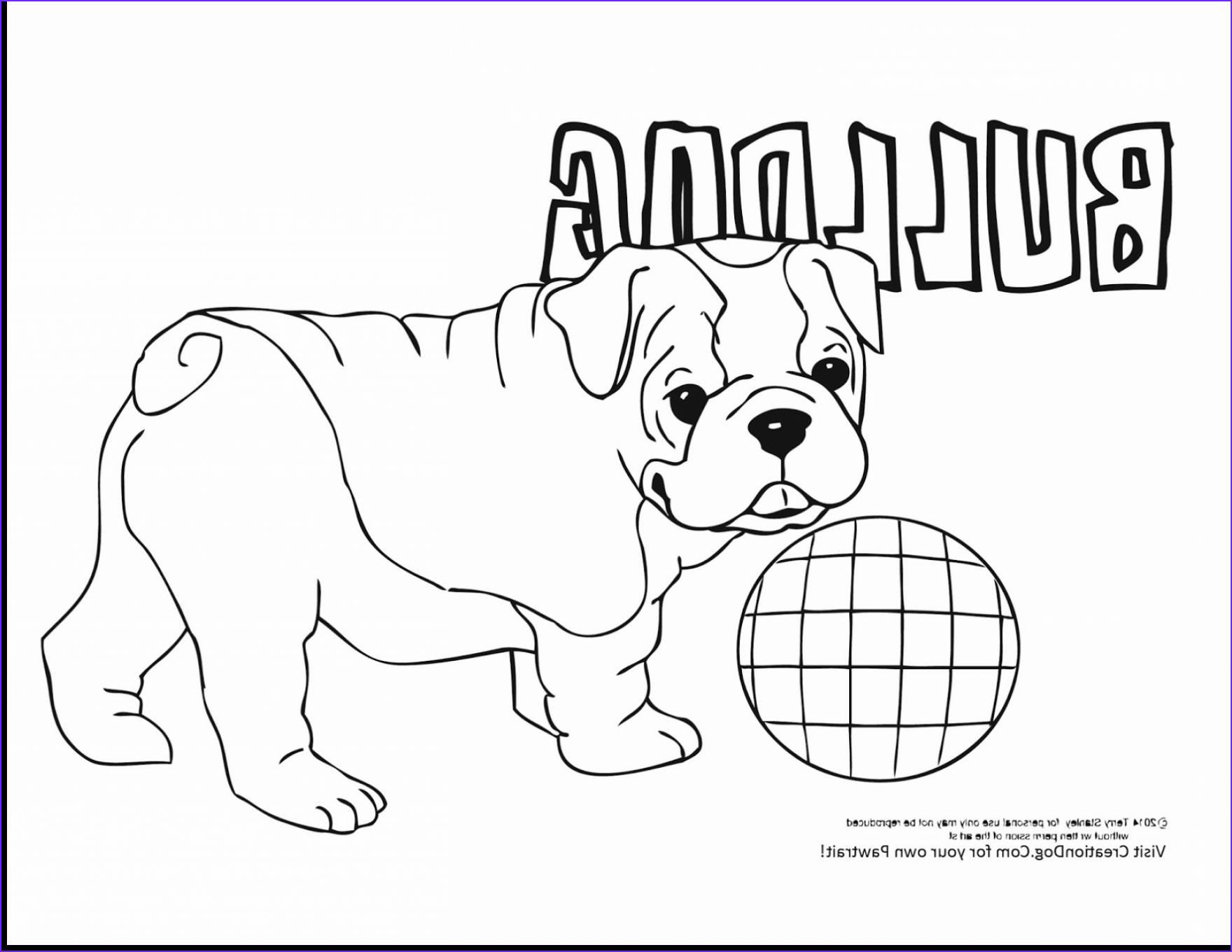 Bull Dog Coloring Pages Inspirational Collection Bulldog Coloring Pages Coloringsuite
