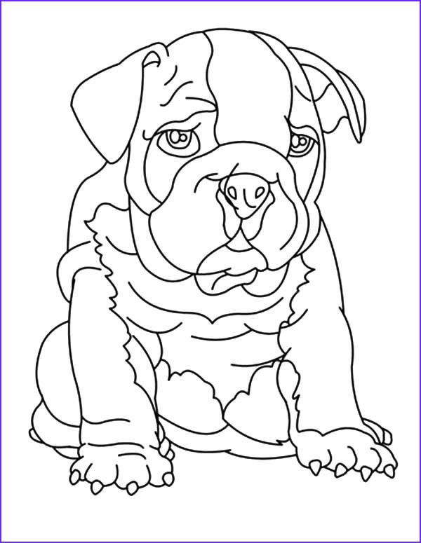 bulldog coloring pictures