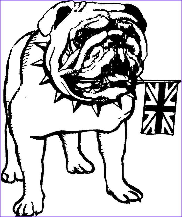 Bull Dog Coloring Pages Inspirational Photos 17 Best Images About Coloring On Pinterest
