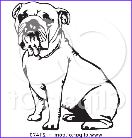 Bull Dog Coloring Pages Luxury Images 208 Best Images About Bulldog On Pinterest