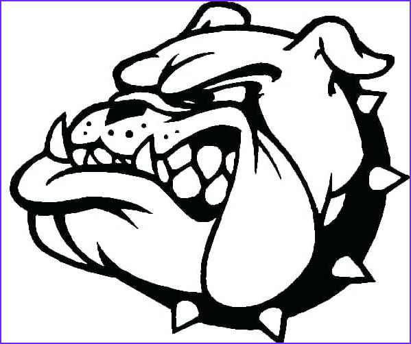 Bull Dog Coloring Pages Luxury Photos Bulldogs Cartoon Drawing at Getdrawings