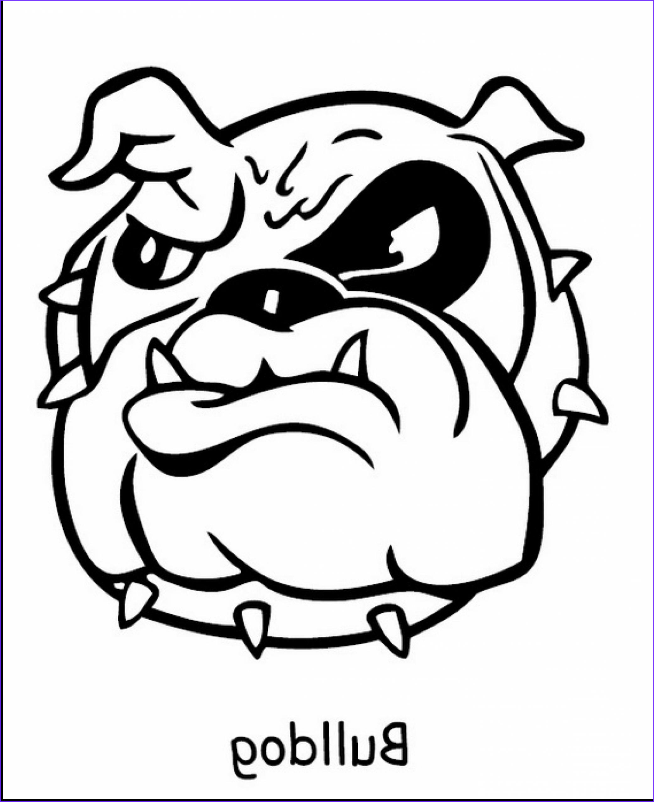 Bull Dog Coloring Pages Luxury Stock American Bulldog Drawing at Getdrawings