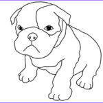 Bulldog Coloring Page Elegant Collection 40 Best Dog Images On Pinterest