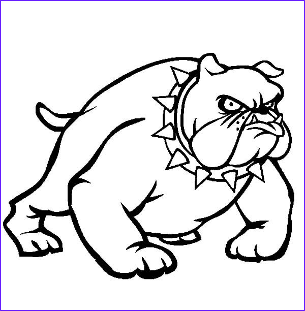 bulldog wearing spikey necklace coloring pages