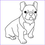 Bulldog Coloring Page Luxury Collection Bulldog Coloring Download Bulldog Coloring