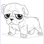 Bulldog Coloring Page New Photography French Bulldog Puppy Coloring Page For Kids
