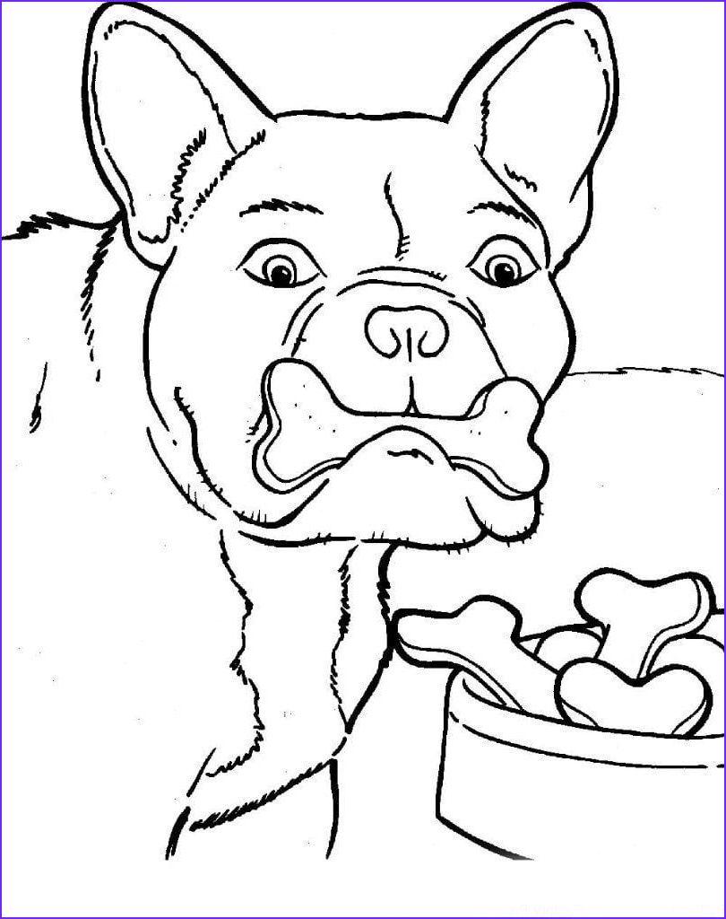 Bulldog Coloring Pages Elegant Photos Bulldog Coloring Pages to and Print for Free
