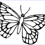 Butterfly Coloring Awesome Gallery Butterfly Coloring Pages Bestofcoloring