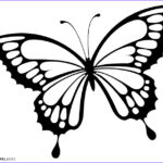 Butterfly Coloring Beautiful Gallery Printable Butterfly Coloring Pages For Kids