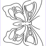 Butterfly Coloring Best Of Photos Butterfly Coloring Page 2