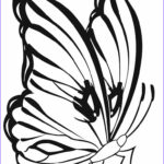 Butterfly Coloring Cool Collection Printable Butterfly Coloring Pages For Kids