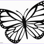 Butterfly Coloring Elegant Image Printable Butterfly Coloring Pages For Kids