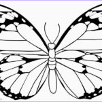 Butterfly Coloring Elegant Photography Printable Butterfly Coloring Pages For Kids