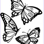 Butterfly Coloring Luxury Image Butterfly Coloring Pages Download And Print Butterfly