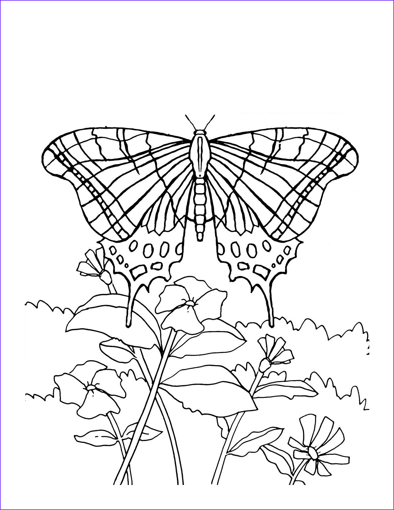 Butterfly Coloring Pages Awesome Photos Free Printable butterfly Coloring Pages for Kids