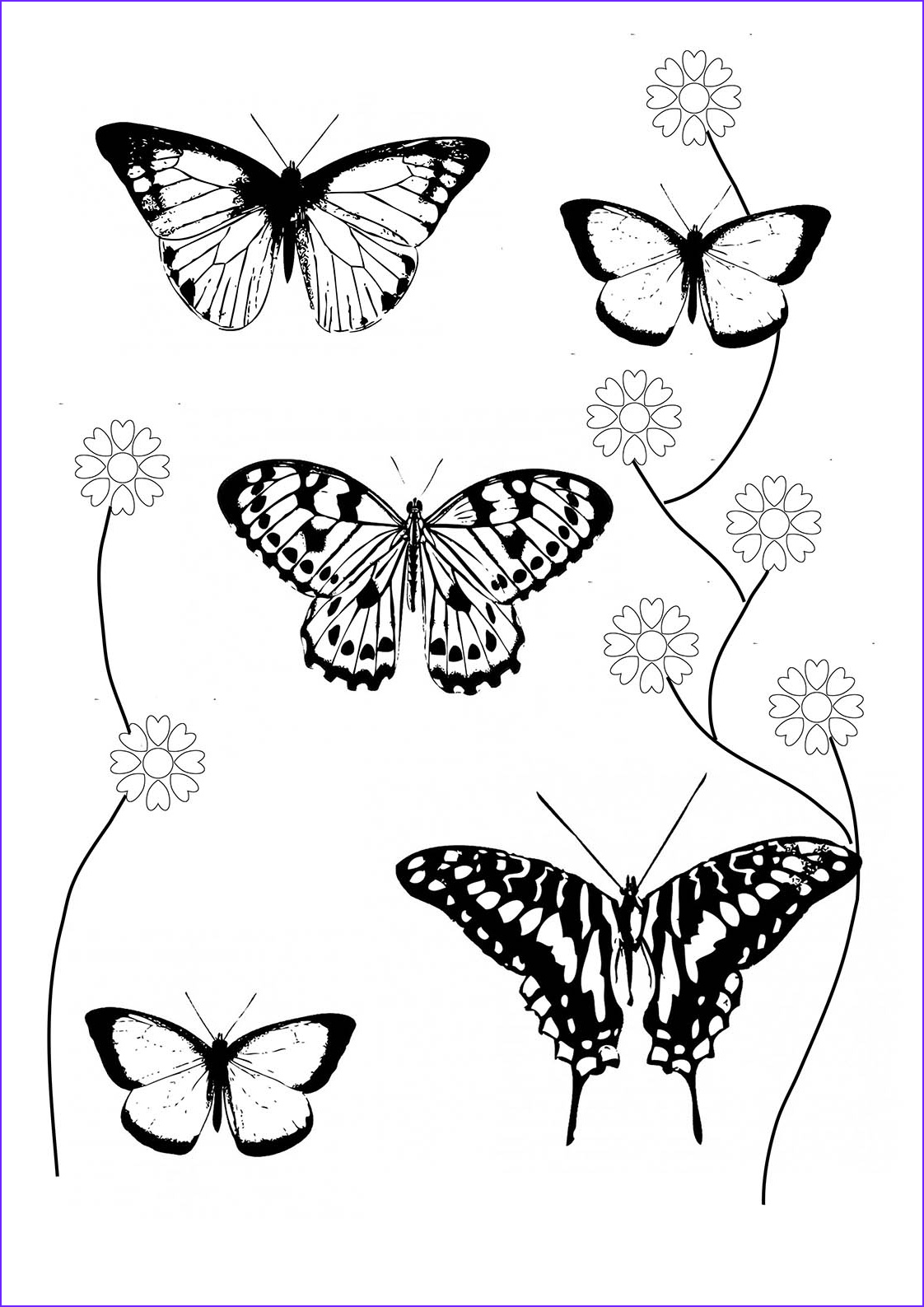 Butterfly Coloring Pages Beautiful Photos butterfly Coloring Pages