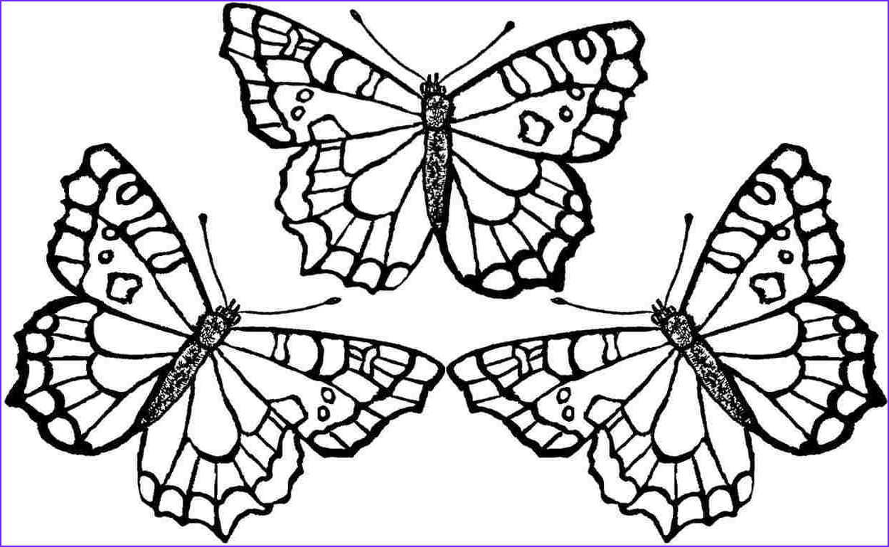 Butterfly Coloring Pages Best Of Stock butterfly Drawing to Print at Getdrawings