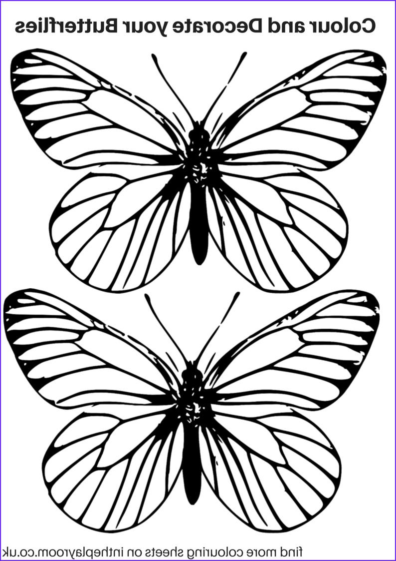 Butterfly Coloring Pages Cool Images Free Printable butterfly Colouring Pages In the Playroom