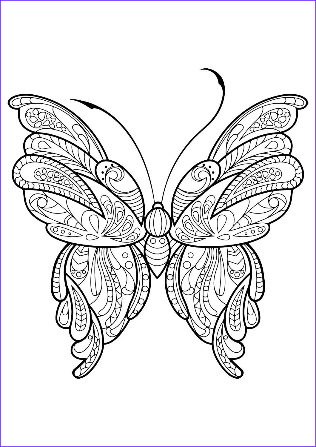 Butterfly Coloring Pages For Adults Awesome Image Adult Butterfly Coloring Book