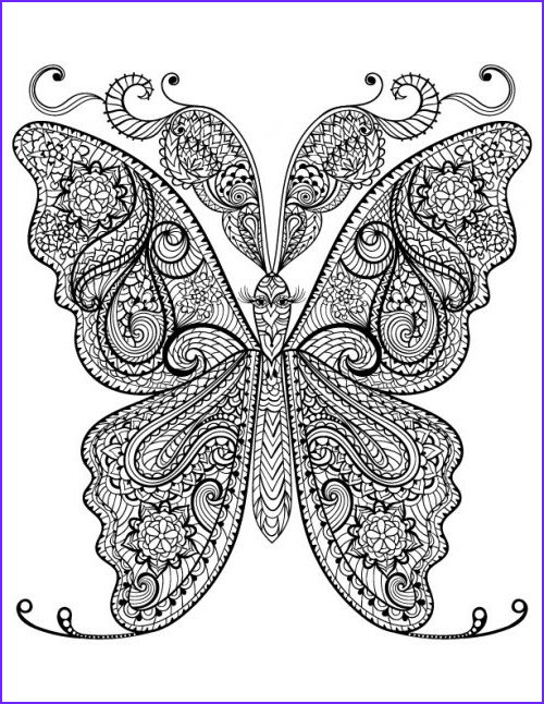 free adult coloring butterfly page