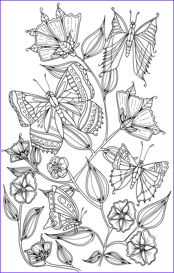 Butterfly Coloring Pages For Adults Beautiful Photos Pinterest • The World's Catalog Of Ideas