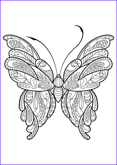 Butterfly Coloring Pages For Adults Cool Photos Adult Butterfly Coloring Book Coloring Pages