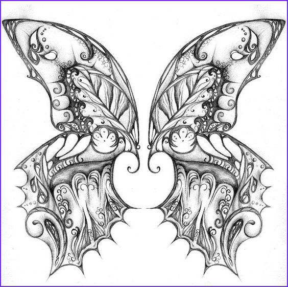 Butterfly Coloring Pages For Adults Elegant Photos Coloring Pages Butterfly Wings And Coloring On Pinterest