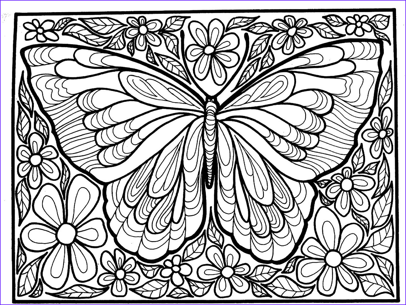 image=insectes coloring adult difficult big butterfly 1