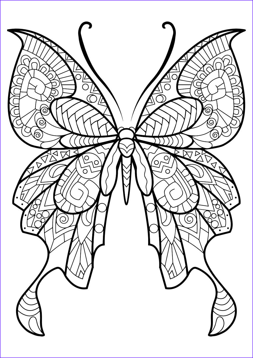 Butterfly Coloring Pages For Adults Unique Photos Adult Butterfly Coloring Book