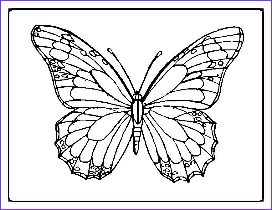 Butterfly Coloring Pages Inspirational Photos butterfly Coloring Pages