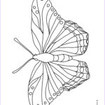 Butterfly Coloring Sheet Inspirational Photography Butterfly Coloring Pages