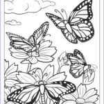 Butterfly Coloring Sheet Inspirational Photos Beautiful Butterfly Coloring Pages