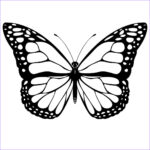 Butterfly Coloring Sheet Inspirational Photos Free Printable Butterfly Coloring Pages For Kids