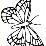 Butterfly Coloring Sheet Unique Images Free Printable Butterfly Coloring Pages For Kids