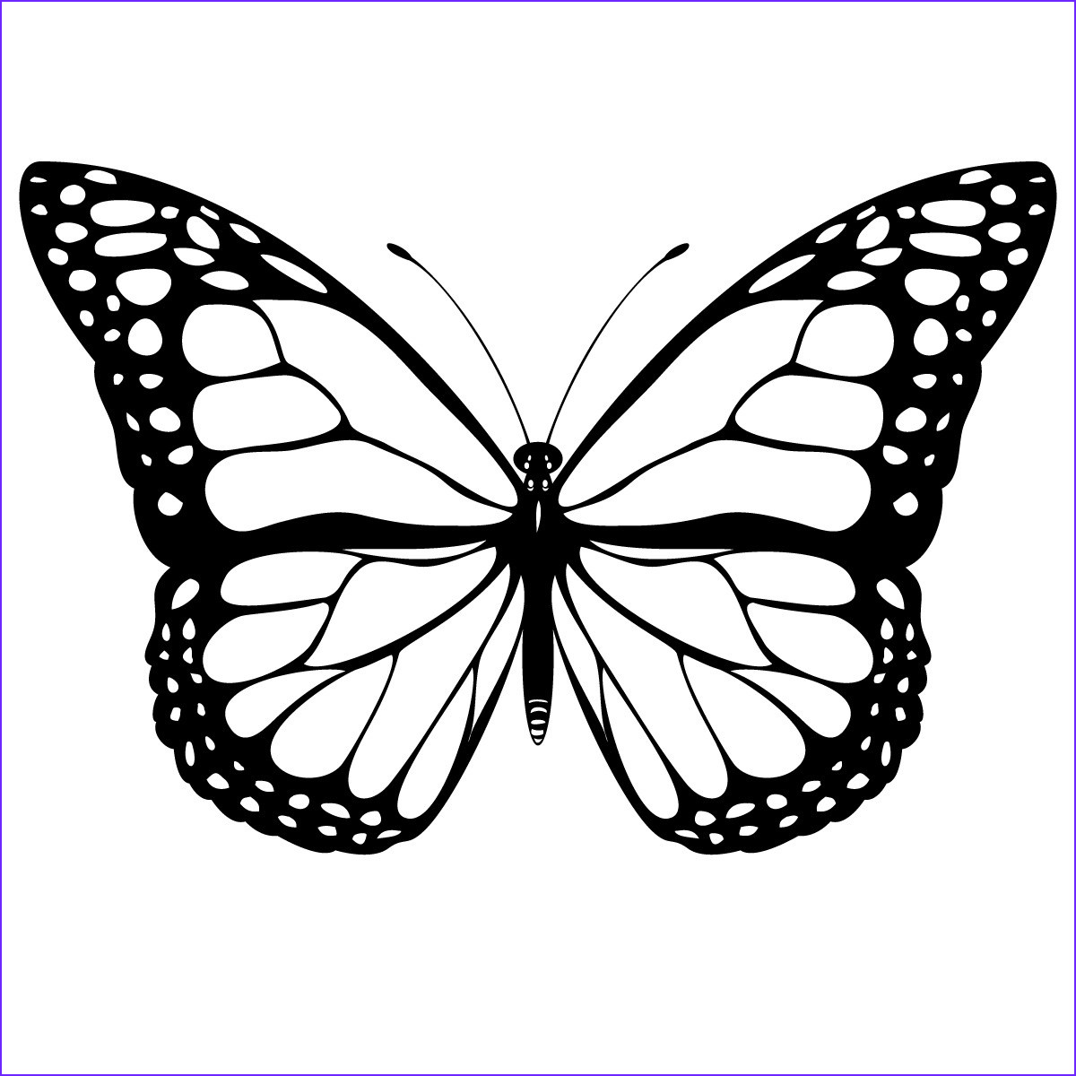 Butterfly Coloring Sheet Unique Photography Free Printable butterfly Coloring Pages for Kids